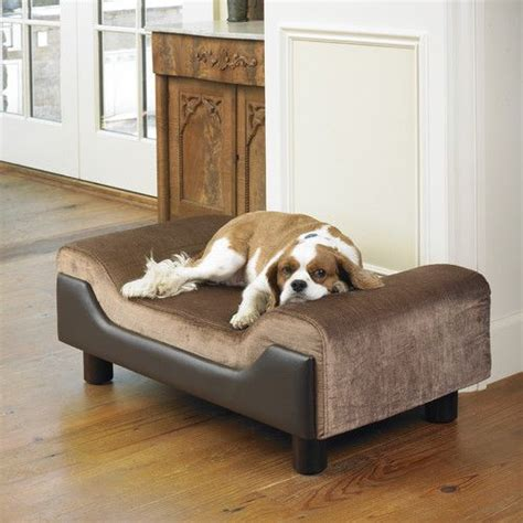 dog beds that look like couches pin by shamim rajabali on dog beds that look like