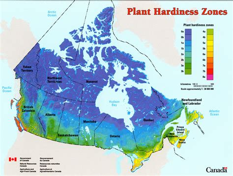 garden zone map forest classification resources canada