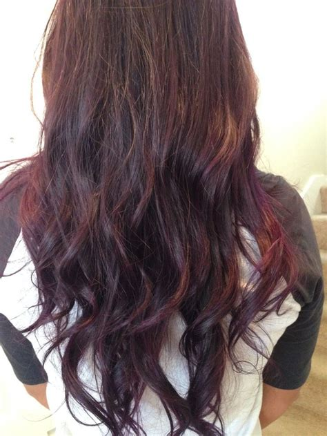 dark brown plum hair color dark brown plum for my next color i m psyched face