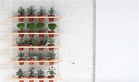 giardini pensili fai da te come realizzare un giardino pensile verticale fai da te