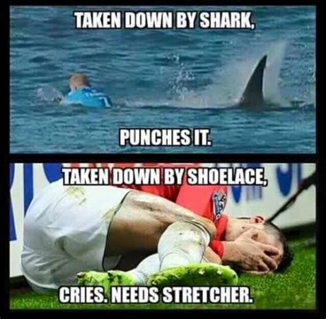 Shark Attack Meme - the best mick fanning shark attack memes to bless the internet