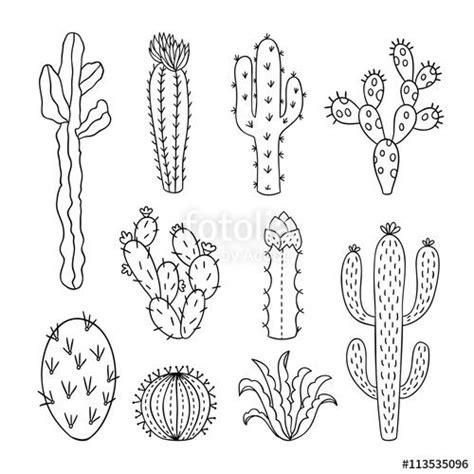 cactus doodle cactus outline vector illustrations succulents plants