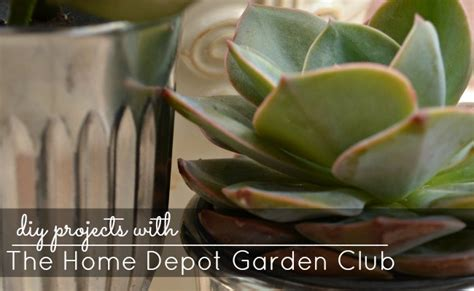 diy projects with the home depot garden club digin