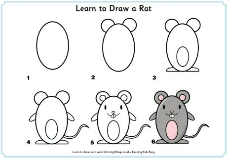 learn to draw a learn to draw a rat drawing rats learning and drawings