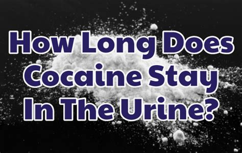 Urine Detox Near Me by How Does Cocaine Stay In The Urine Rehab Near Me