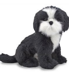 shih tzu depression dementia depression and therapy on