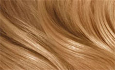honey hair color chart best hair color charts hairstyles weekly