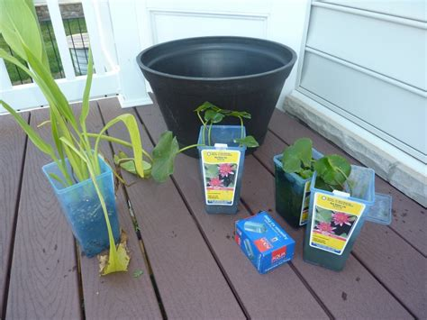 container water garden supplies diy container water garden whats ur home story