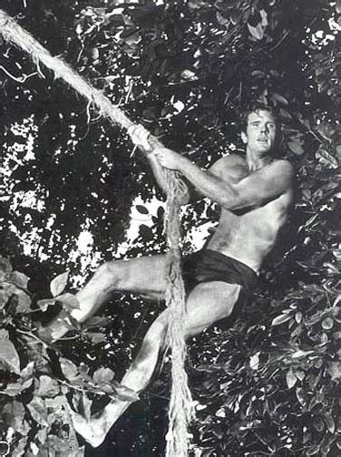 actress in tazan does not know where tarzan goes 20 best tarzan ron ely in lane images on pinterest