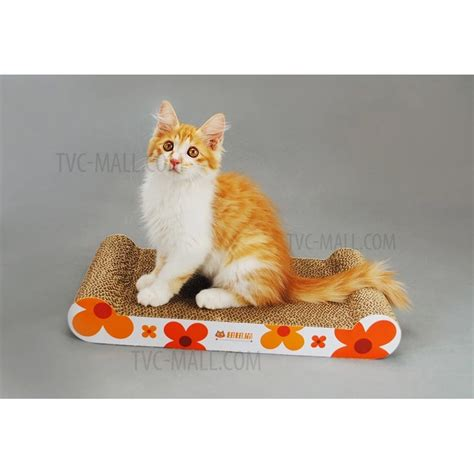 best sofa for cats with claws best sofa for cats with claws 28 images best sofa