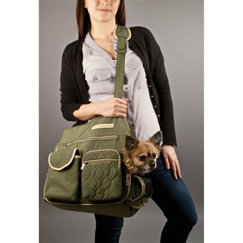 Lifepop Stereo Pet Carrier by 80 Best Images About Cat Carriers On