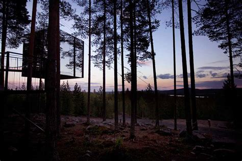 tree hotel sweden the treehotel in sweden for nature lovers 171 twistedsifter