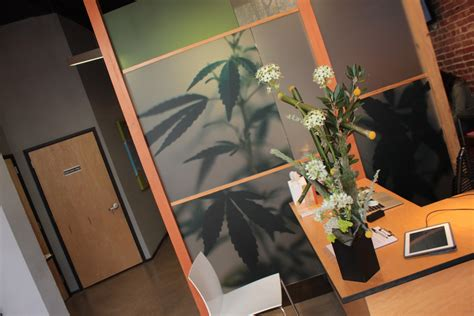 bloom room cannabis collective san francisco ca best