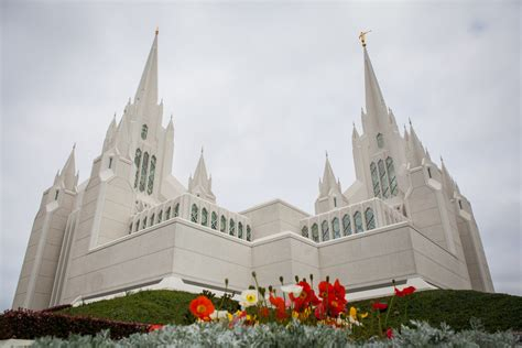 searching for sanviejo notes to my younger self books san diego california temple