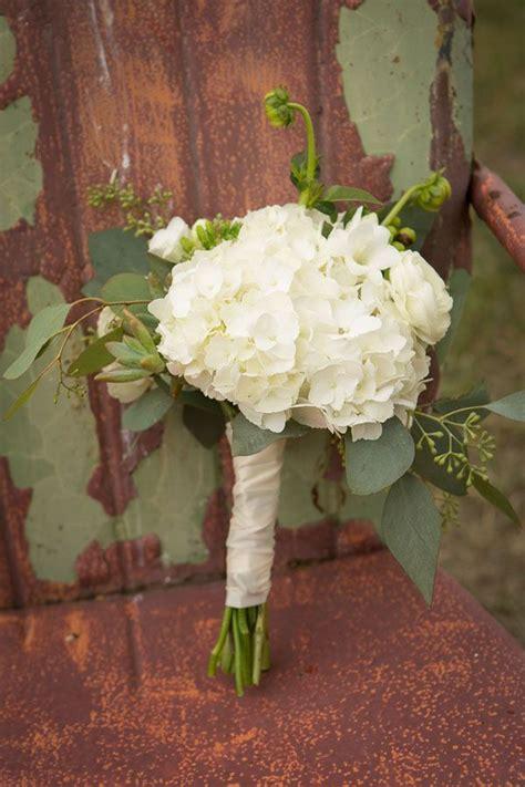 pianta verde con fiori bianchi the uva verde fiori bianchi