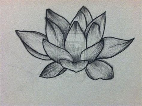best small designs for part 1 tatoo world lotus flower part 1 weneedfun