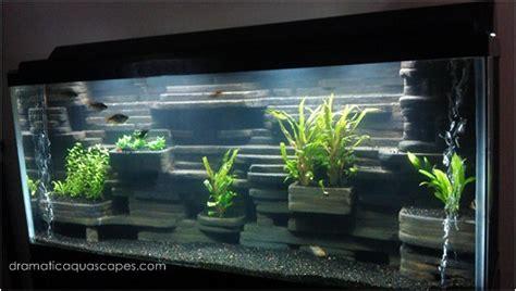 dramatic aquascapes dramatic aquascapes diy aquarium background aaron