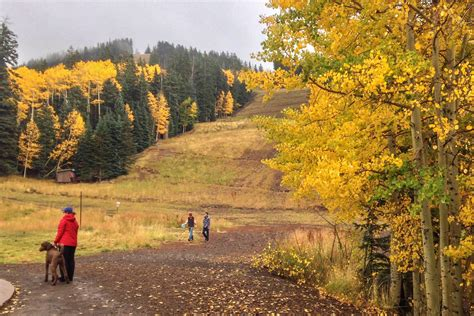 fall colors in arizona arizona snowbowl in fall top places to see in arizona