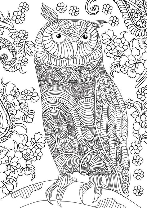 wonderful owls coloring book for adults and stress reduction combining nature poetry and for relaxation meditation and creativity volume 2 books best coloring books free book today and tomorrow
