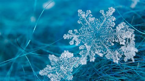 snowflake desktop wallpaper wallpaper high definition