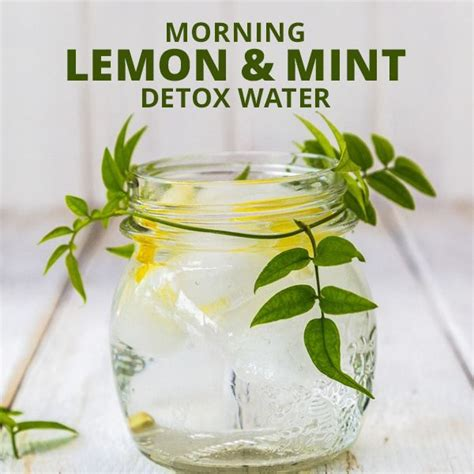 Lemon Water Detox For Test by Morning Lemon Mint Detox Water Recipe Detox Waters