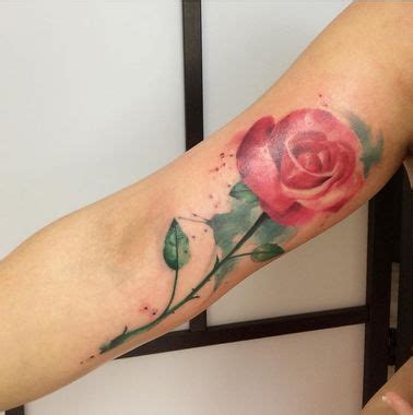 watercolor tattoo emrah 1000 ideas about german on words