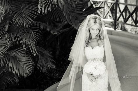 Wedding Hairstyles For Cathedral Veils by Lazaro Gown Cathedral Veil Wedding Gown Wedding