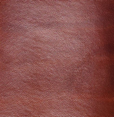 Cover For Leather by Image Gallery Leather Book Cover