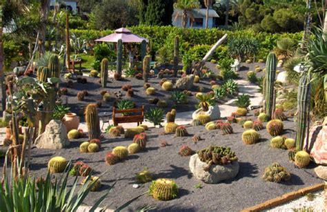 giardini piante grasse per esterno consigli su come curare i giardini rocciosi in estate