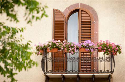 lavanda in vaso cure un balcone perfetto senza cure con santolina e lavanda