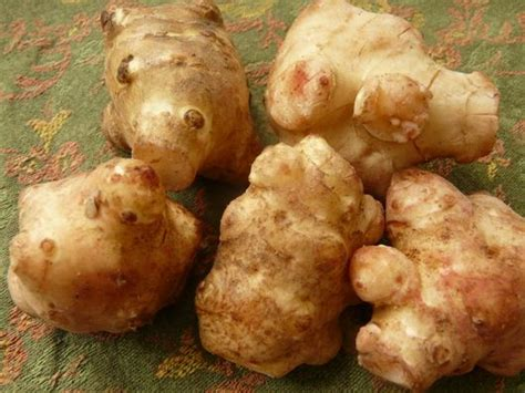 healthiest root vegetables root vegetables 101 a primer on the most underappreciated