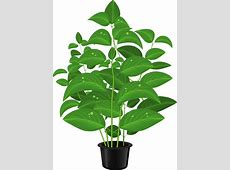 Pot Plant clipart cute flower - Pencil and in color pot ... House With Garden Clipart
