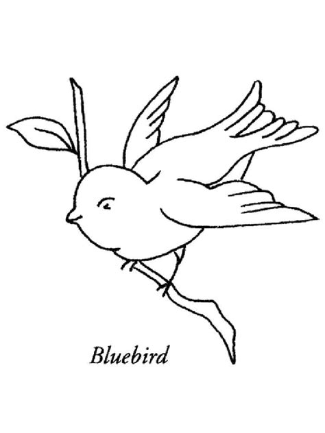 Bluebird Coloring Pages Download And Print Bluebird Bluebird Coloring Page