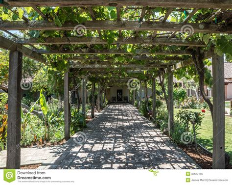 Trellis Plans Free arbor of grape vines royalty free stock image image