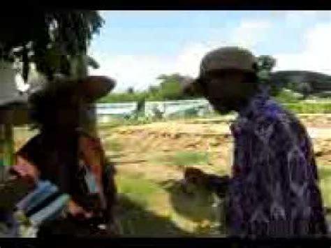 cara menanam pohon pisang doovi