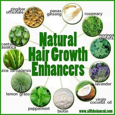 hair growth stimulants for women oil fresh rosemary burdock root infused hair and scalp oil