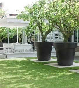 Large Pots For Outdoor Plants Pot Plants Gardenique
