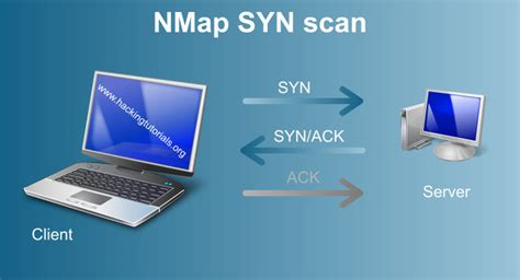 nmap tutorial scan metasploitable 2 enumeration hacking tutorials
