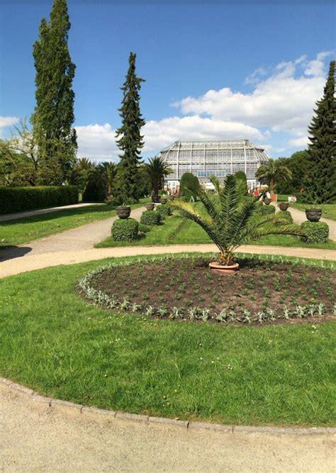 Berlin Dahlem Botanical Garden And Botanical Museum Berlin Berlin Botanical Garden