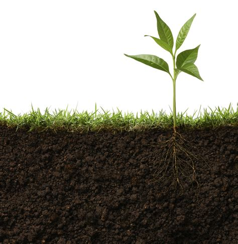 in with pictures s o s to save our soils anh international