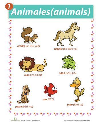 sur la table pronunciation animals in the o jays and animals