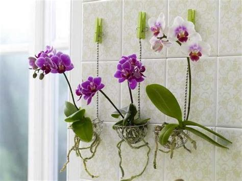 Handmade Decorations For Home 15 Creative Reuse And Recycle Ideas For Interior Decorating