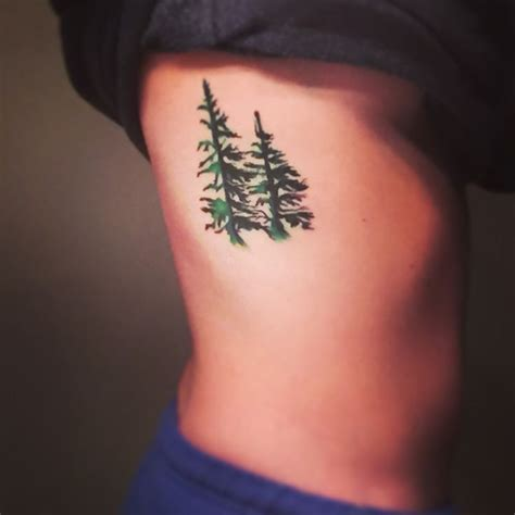 evergreen tree tattoo 17 best ideas about evergreen on tree