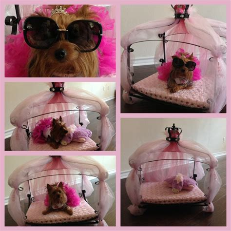 yorkie beds and carriers 73 best images about my yorkie on yorkie terrier puppies and pet clothes