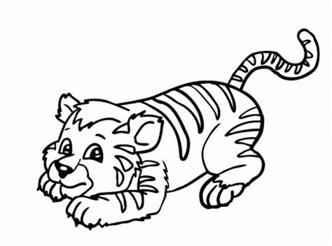 imagenes de tigres faciles para dibujar tigres facil de dibujar imagui