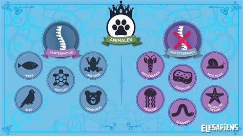 191 que comen los animales vertebrados 191 de que se alimentan animales vertebrados e invertebrados youtube