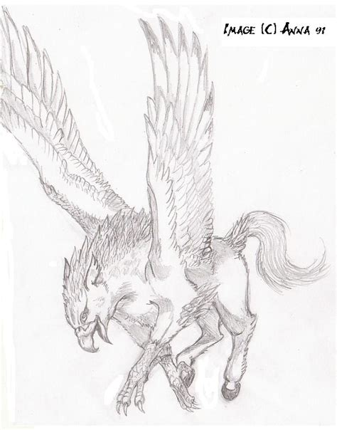 hippogriff coloring page hippogriff by anna xiii on deviantart