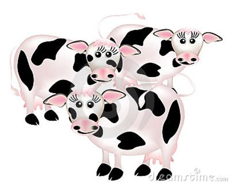 group  cows cartoon royalty  stock images image