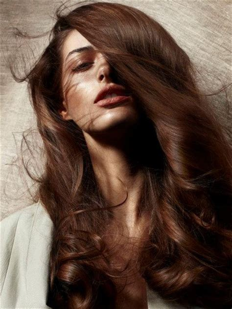 brown hair colors for 50 50 chocolate brown hair color ideas for brunettes
