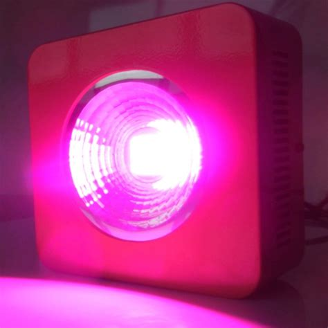 led grow lights for orchids 25 3w led grow lights grow light orchid greenhouse